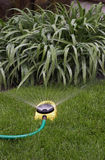 Watering Sprinkler II Stock Image