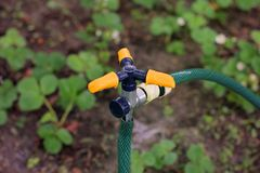 Watering system in the garden stock photography