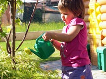 Watering The Plants Royalty Free Stock Photo