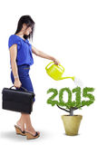 Watering a tree shaped number 2015 Stock Photography