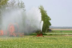 Sprinkler in the tulip fields, agriculture in the Noordoostpolder, Netherlands. An sprinkler installation is watering the tulip fields in the Northeast polder ( Stock Images