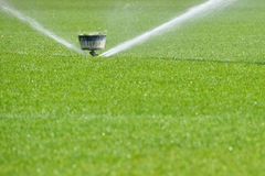 Watering turf Stock Photos