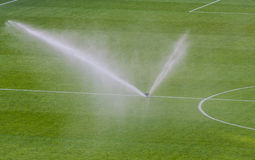 Watering turf on a football stadium Stock Images