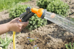Watering water from a hose of various plants Royalty Free Stock Image