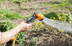 Watering water from a hose of various plants Stock Photography