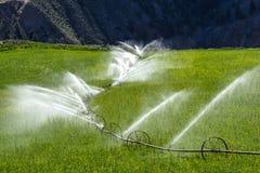 Watering, wheel line sprinkler irrigation. Wheel line sprinkler irrigation of a field and meadow on green farmland Royalty Free Stock Images