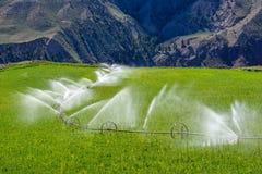 Watering, wheel sprinkler line irrigation. Wheel line sprinkler irrigation of a field and meadow on green farmland Royalty Free Stock Photo