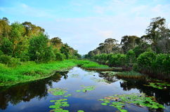 Waterkanaal Royalty-vrije Stock Afbeeldingen