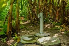 Waterkraan bij het bos bij het tropische eiland wordt gevestigd dat royalty-vrije stock afbeelding