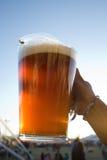 Waterkruik bier Stock Fotografie