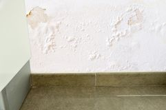 Waterlek in de muur royalty-vrije stock foto