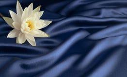 Waterlelie op blauw satijn Royalty-vrije Stock Afbeeldingen