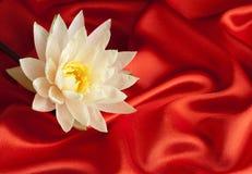 Waterlelie op rood satijn Royalty-vrije Stock Afbeeldingen