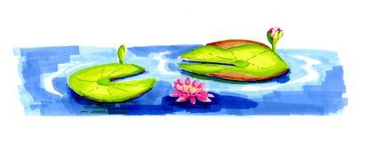 Waterlelies in meer Stock Foto's