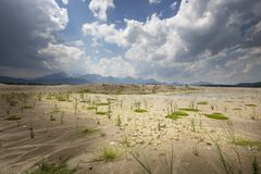 Waterless Forggensee lake in Bavaria, Germany. With some plants growing again royalty free stock photo