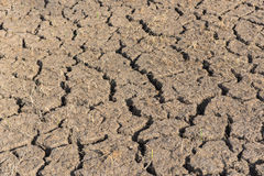 Waterless land Stock Photography