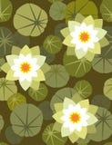 waterlily无缝的墙纸 库存照片