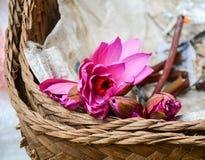 Waterlily blommar på marknaden i den Gili Meno ön, Indonesien Fotografering för Bildbyråer