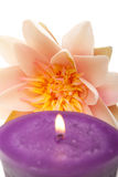 Waterlily and candle spa decor. Lit candle in front of a waterlily for spa decor Stock Photo