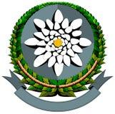 Waterlily cartoon logo Stock Photo