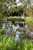 Waterlily dammKew trädgårdar Royaltyfria Bilder