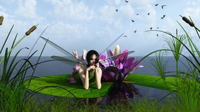 Waterlily Fairy on the Lake Royalty Free Stock Images