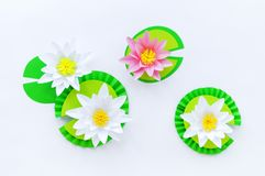 Waterlily flower made of paper. white background. Origami hobby. Gentle petal. Marsh with frogs tradition stock images
