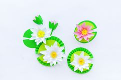 Waterlily flower made of paper. white background. Origami hobby. Gentle petal. Marsh with frogs tradition stock image