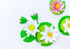 Waterlily flower made of paper. white background. Origami hobby. Gentle petal. Marsh with frogs tradition royalty free stock photography
