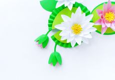 Waterlily flower made of paper. white background. Origami hobby. Gentle petal. Marsh with frogs tradition stock photography
