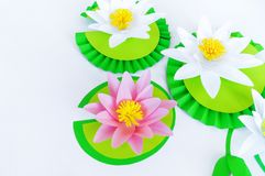 Waterlily flower made of paper. white background. Origami hobby. Gentle petal. Marsh with frogs tradition royalty free stock images