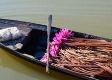 Waterlily flowers on a wooden boat stock photos