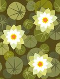 Waterlily - seamless wallpaper. Floral seamless pattern with styled flowers Stock Photo