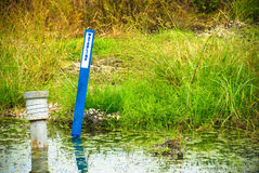Waterline sign in lush pond. Stock Photography