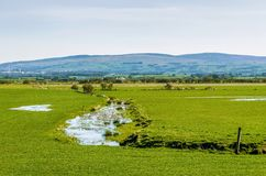 Waterlogged English field. Stock Photos