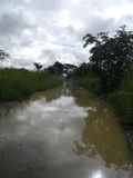 A waterlogged road/trail. Stock Photos