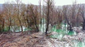 Waterlogged trees in Yesa reservoir. Saragossa, Aragon, Spain. Europe.