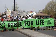 Waterloo för utplåningrevoltprotest bro london royaltyfri fotografi