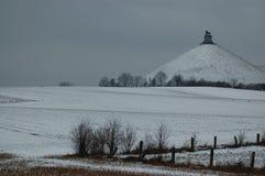 Waterloo i snön royaltyfria bilder