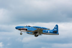Requin de Mako T33 Photographie stock libre de droits
