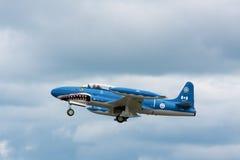 Haifisch des Mako-T33 Lizenzfreie Stockfotografie