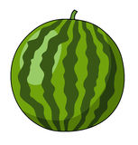 Watermellon Royalty Free Stock Photos