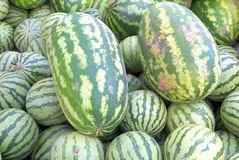 Watermellons. Fresh produce at a local farmers market Royalty Free Stock Photography