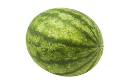 watermeloen Royalty-vrije Stock Foto's