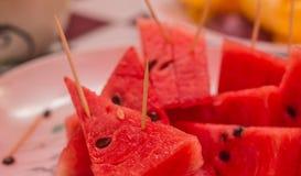 watermeloen Stock Afbeelding