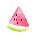 watermeloen De illustratie van de waterverf Stock Foto