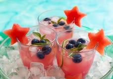 Watermeloen en bosbessendrank royalty-vrije stock foto's