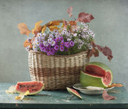 Watermeloen en boter-onkruid royalty-vrije stock foto's
