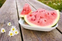 Watermeloen en madeliefjes royalty-vrije stock afbeelding