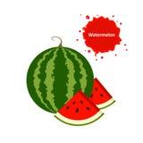 Watermeloen en plak Stock Foto